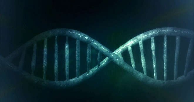 DNA Featured Image