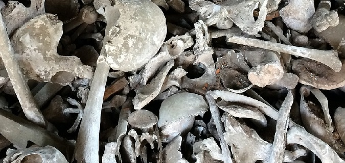Forensic Anthropology Featured Image